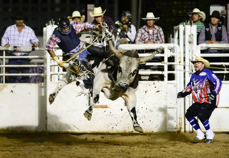 RODEO 7