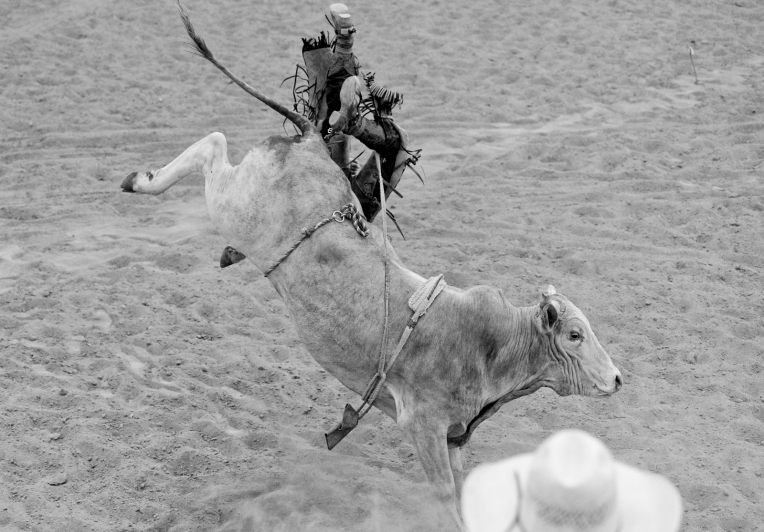 the CPRA Rodeo at the Boulder County Fairgrounds on Sunday. Go to timescall.com for more photos. Matthew Jonas / Staff Photographer Aug. 2, 2015