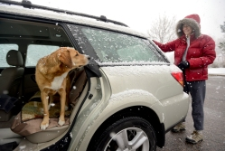 Lyn Perdue, of Longmont, brushes snow from the windows of her car as her dog Kona looks on Thursday at Left Hand Creek Park in Longmont. Perdue had taken Kona for a walk near the park. Matthew Jonas / Staff Photographer April 16, 2015